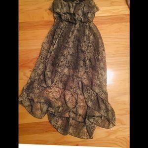 Strapless Animal Print Dress